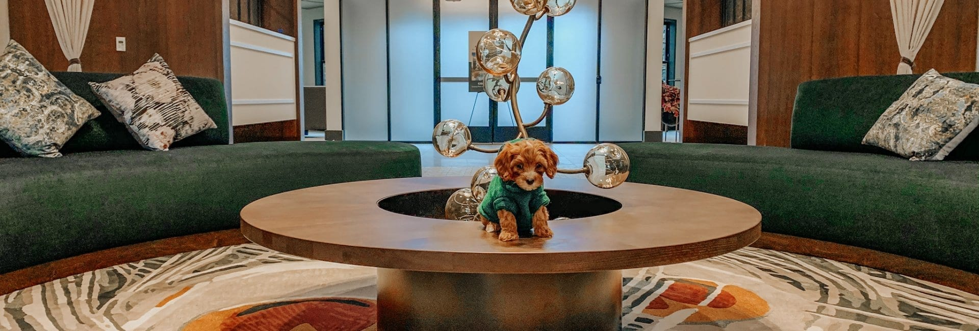 Dog in Carraway Apartments Lobby